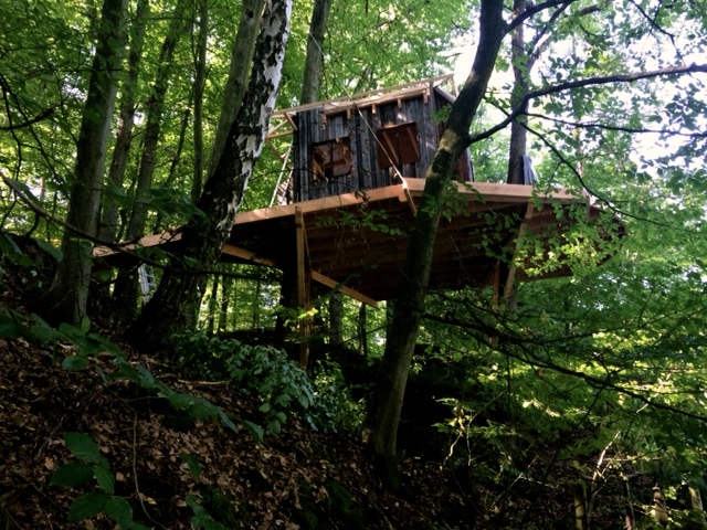 a new treehouse is under construction the treehouseblog. Black Bedroom Furniture Sets. Home Design Ideas