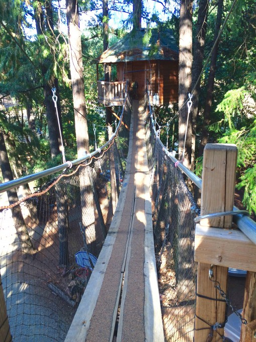 Suspension bridges connect the treehouses to each other in 25 feet above the ground
