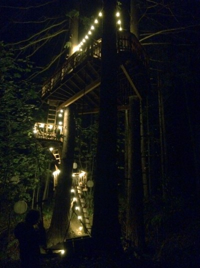 Blind date with a treehouse