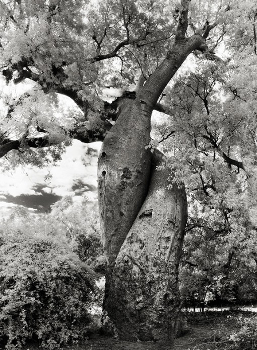 Beth Moon – The Lovers