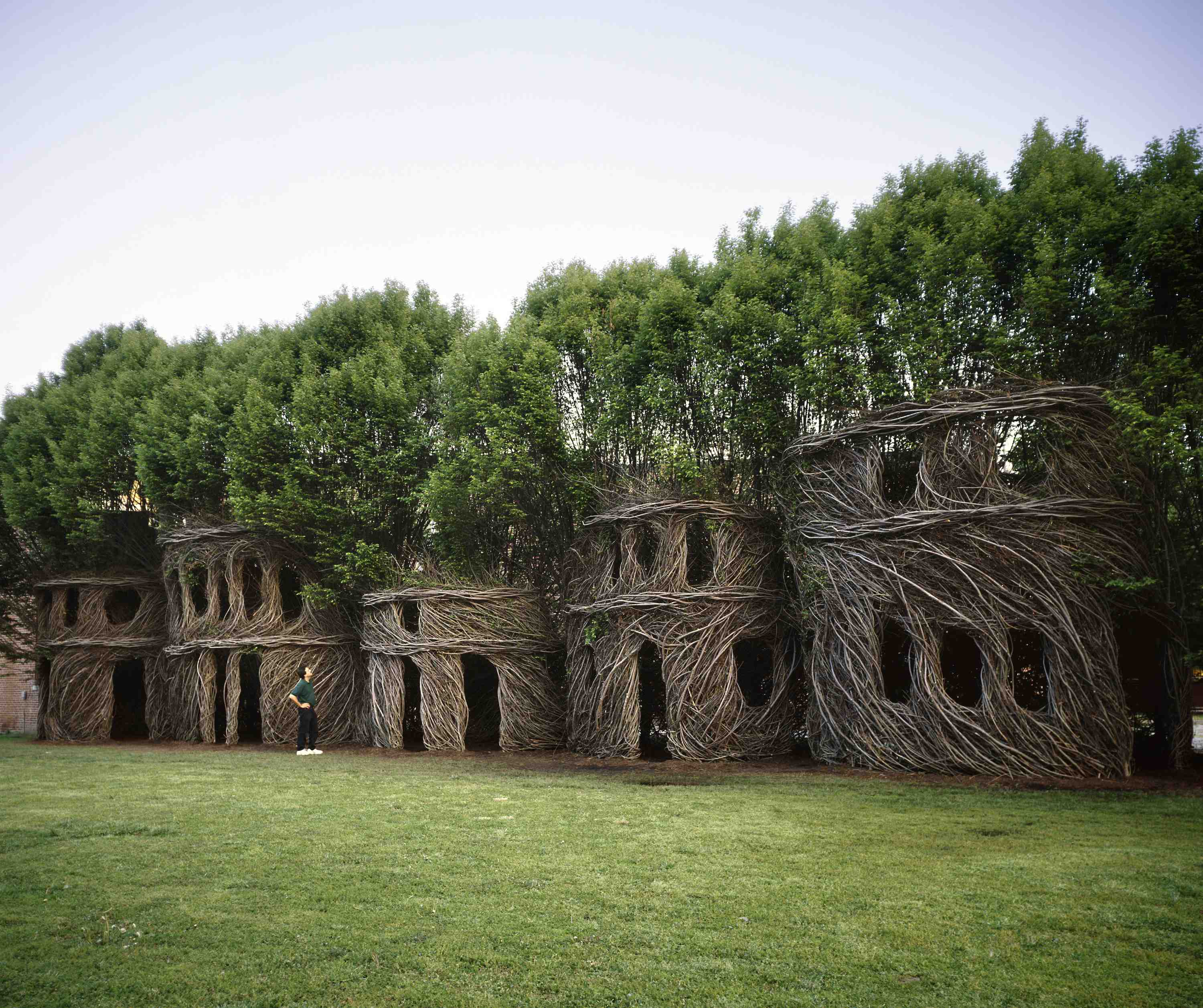 The mysterious creatures of Patrick Dougherty