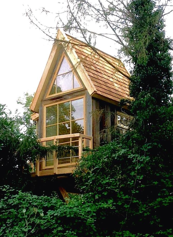Cozy treecave for hibernation