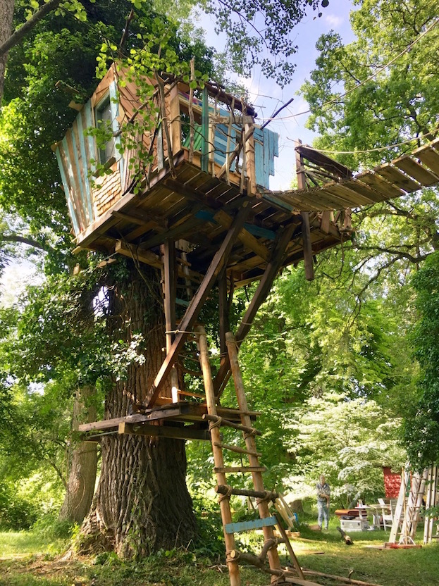 Main actor? This treehouse!